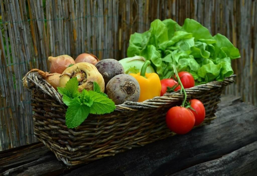 スムージーで使う野菜の写真