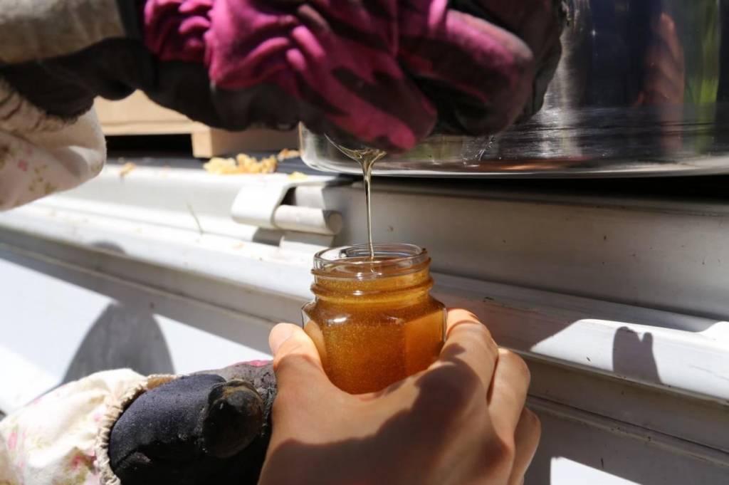 蜂蜜をビンに注いでいる写真